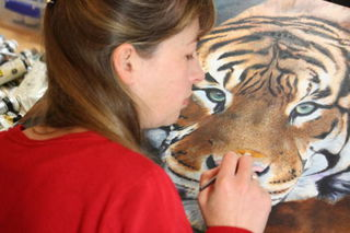 A tiger in progress - 2013