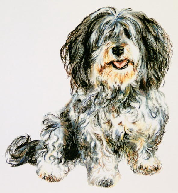 Pet portrait by Marie-Claire Colyer