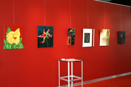 Collections Exhibition – 2007