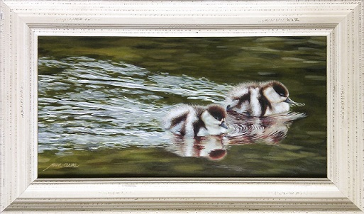 Hastening – Paradise Shelduck Ducklings painting by Marie-Claire Colyer in her signature frame